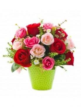 12 Elegance Assorted Pink and Red Roses