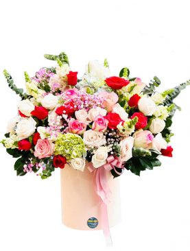 24 Elegance Assorted Pink and Red Roses