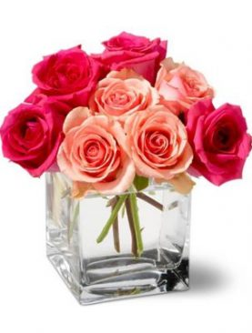 A Dozen of Pink & Red Roses in a Glass Vase