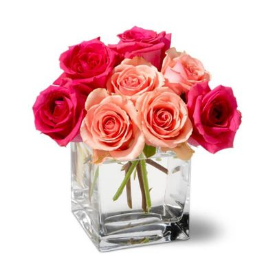 A Glass Vase of Dozen Pink & Red Roses