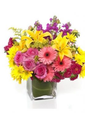 Vibrant Assorted Gerberas