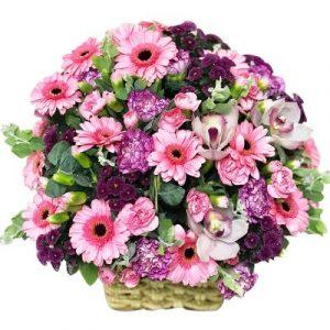 A basket of lovely daisy