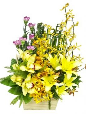 Yellow Orchid Basket