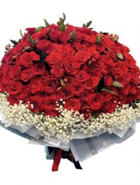 Red Roses, 12-99 Stems
